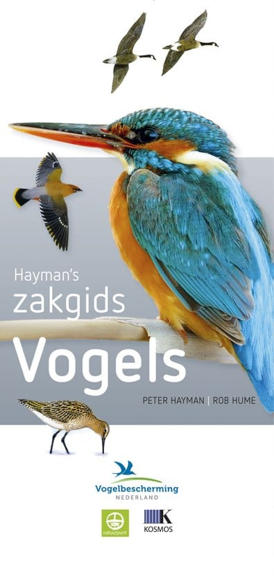 #9.  Hayman's Zakgids