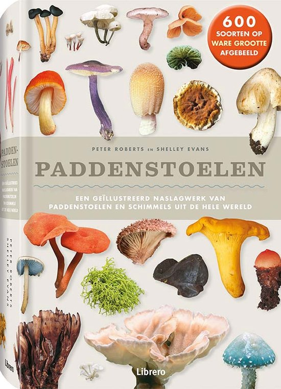 #5. Paddenstoelen door Peter Roberts en Shelley Evans