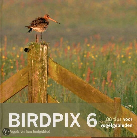 Birdpix 6