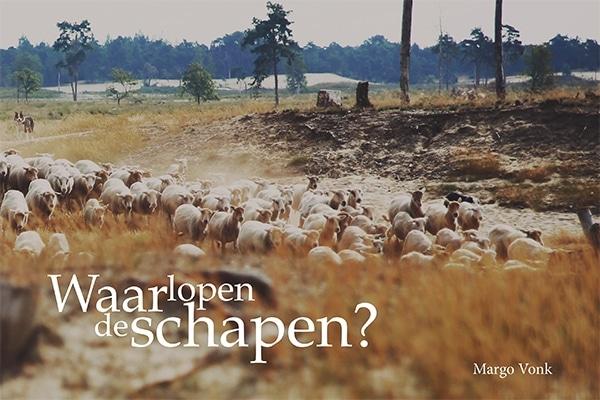 Waar lopen de schapen?
