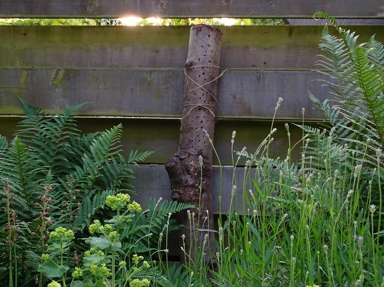 Tuin Zelf Ontwerpen : Zelf een bijenhotel maken visdief